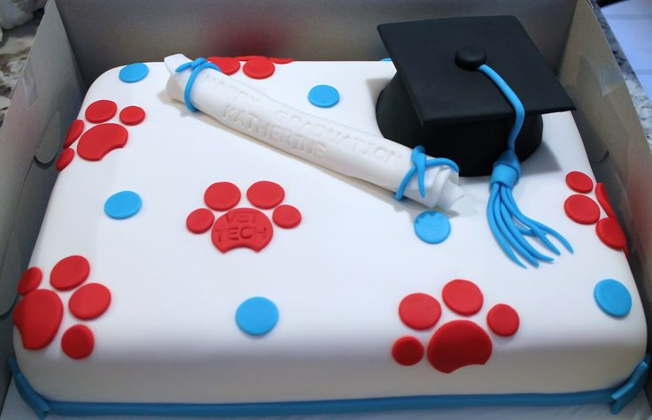 Vet tech graduation cake