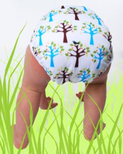 Bumbleberry-Diaper-Service-PEI-Thirsties-Cloth-Diaper-Cover-Wrap-home-page