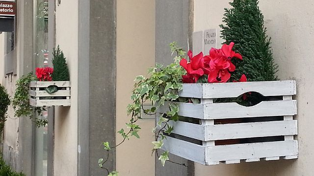 Addobbi natalizi 2014 cerca con google fiori - Addobbi natalizi da giardino ...