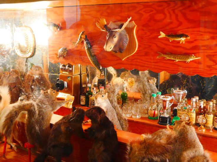 14 best Private Night Tour of Morbid Anatomy Museum images on ...