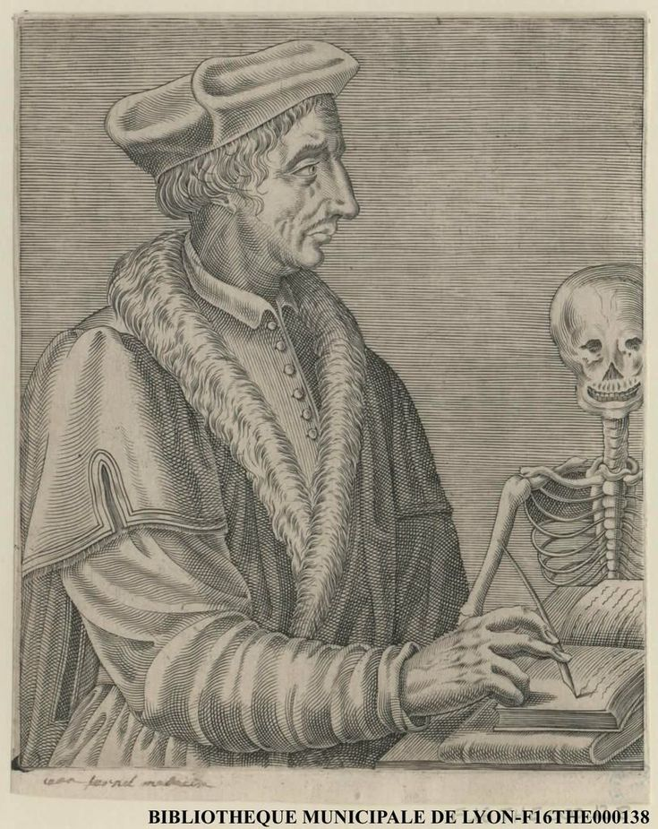 Portrait de Jean Fernel, médecin #Estampe
