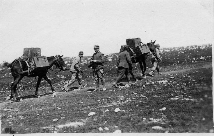 18 luglio 1915 Seconda battaglia dell'Isonzo    #TuscanyAgriturismoGiratola