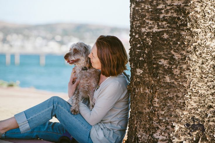 Lilly the Cavaloodle captured by BB in Adelaide's beachside suburb, Brighton- 2013  ©Bitsa Bernard Photography: Adelaide Dog Photographer