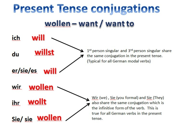 Model Verb - Wollen- to want