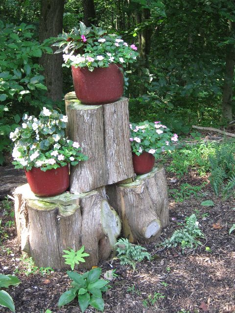 use old tree trunks to serve as pedestals for container plants.: Gardens Ideas, Outdoor And Yard, Trees Trunks, Gardens In Maryland, Old Trees, Container Plants, Gardens Features, Gardens Escape, Gardens Tipsidea