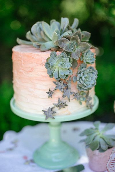 This glorious, succulent-covered one.   24 One-Tier Wedding Cakes That Prove That Less Is More