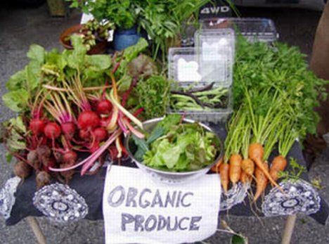 I am so blessed to be able to have organic produce daily. I am grateful for our box which is delivered each Friday and for the farm stall at the local markets. Thank you!