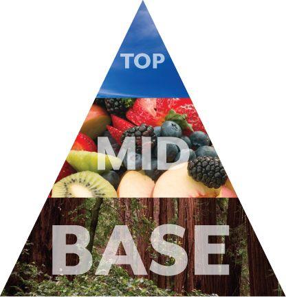 Scentsy Fragrance Pyramid