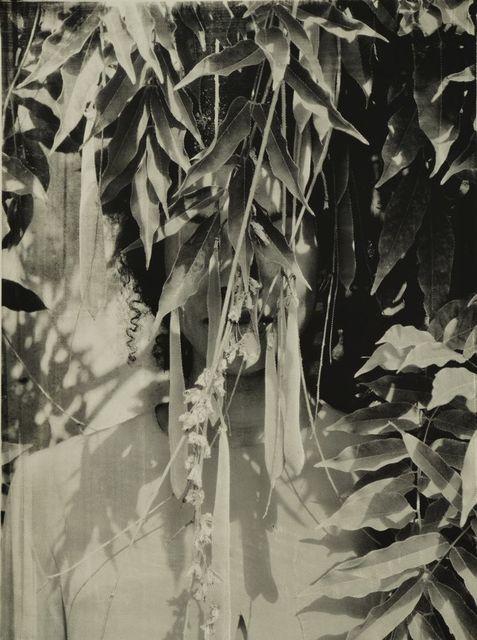 Zohra Opoku, 'Wisteria,' 2015, Mariane Ibrahim Gallery