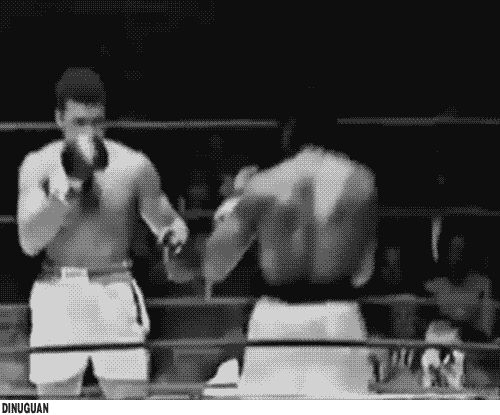 Muhammad Ali is just absolutely amazing.