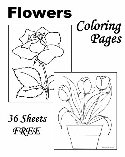 find this pin and more on kids spring coloring these free printable flower coloring sheets - Spring Coloring Sheets Free Printable