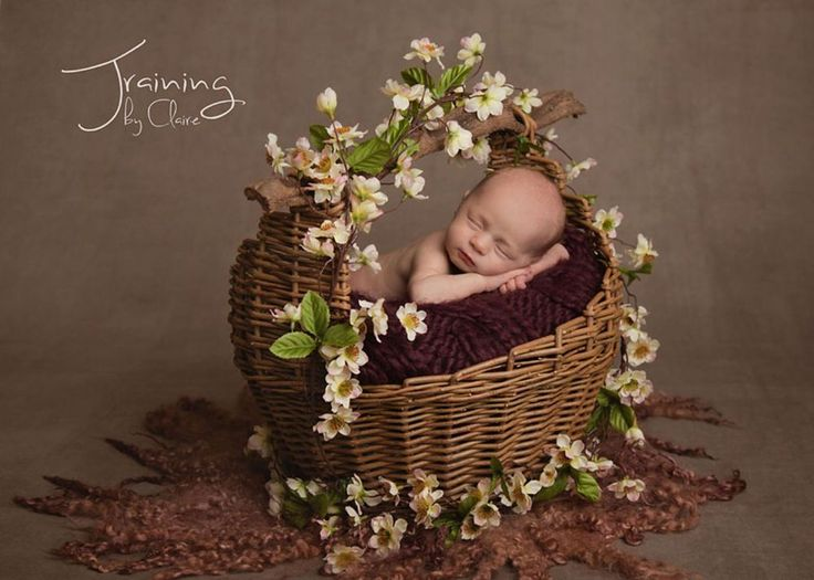 Natural handle basket newborn posingnewborn