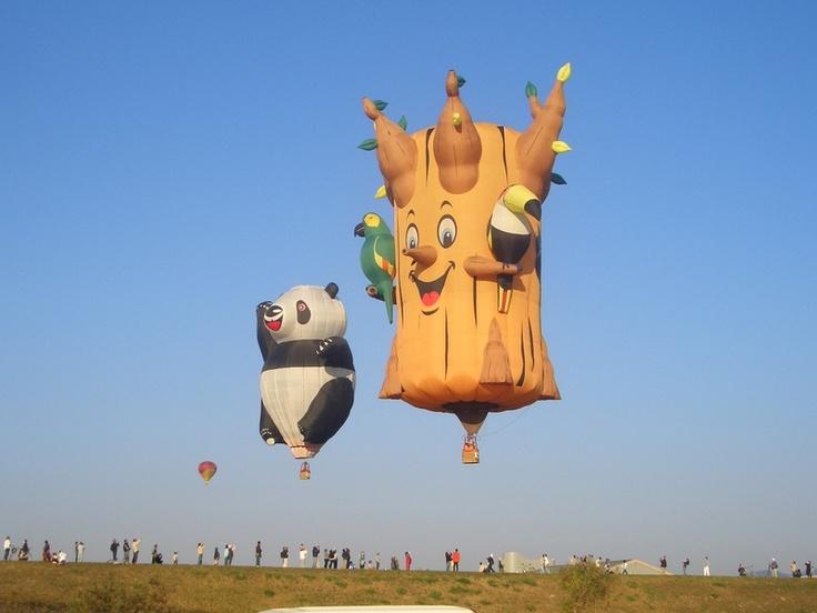 Hot Air Balloons at the Saga Balloon fiesta