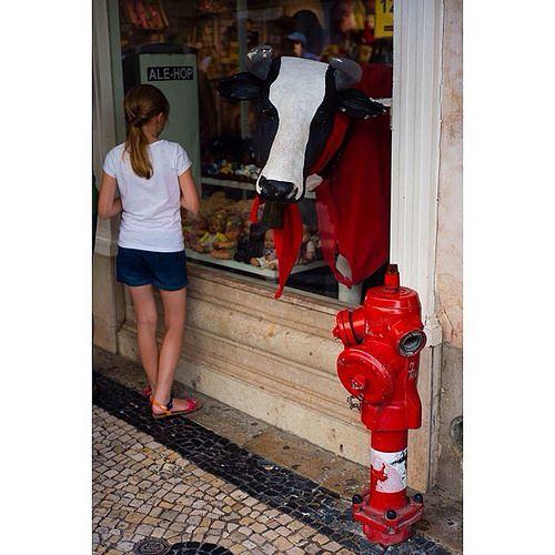 Scene captured at the streets of Lisbon. #my2014inphotos #aroundtheworld2014 #nikontravel #travel #travelphotography #wanderlust | Flickr - Photo Sharing!
