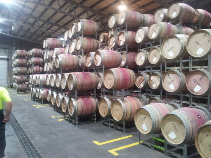 #LeeuwinEstate Barrel room  (#RNAWA13)