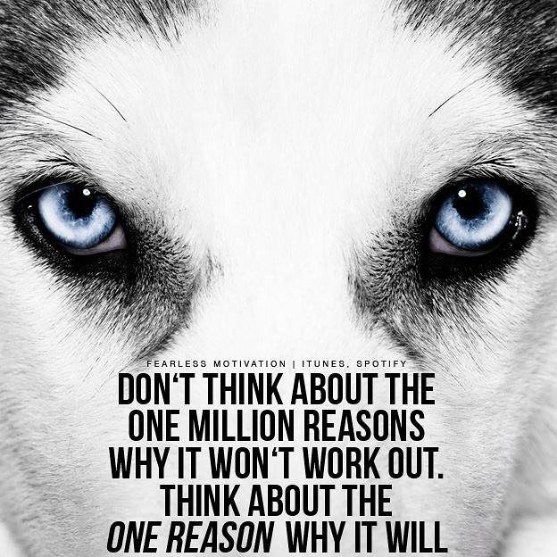 #teamfearless #wolf #quotes #love #light #ascencion #darknight #philosophy #loa #rebirth #journey #depression #isolation #dna #starseed #sagittarius #warrior #music #soulmate #loa http://quotags.net/ipost/1647225674283324898/?code=BbcHwX8j5Xi