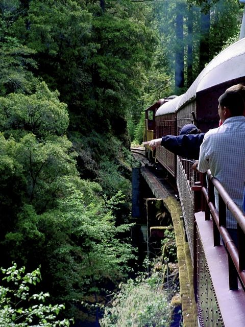 Skunk Train, Fort Bragg, CA. I remember going on this as a kid. I think I'd like to go back as an adult.                                                                                                                                                      More