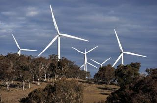 Australia's War On Wind Farms Threatens Biggest Re...