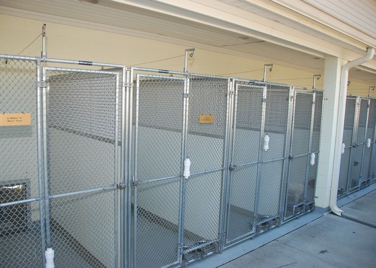 Mason Company Chainlink Gates Kennel Gates Kennel Doors