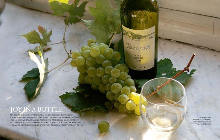 Cornucopia Magazine Joy in a Bottle Corvus Teneia