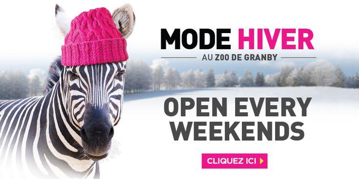 Zoo de Granby - Montreal - WELCOME