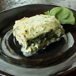 White sauce chicken lasagna with spinach. Yum! The sauce alone is also great over any pasta.