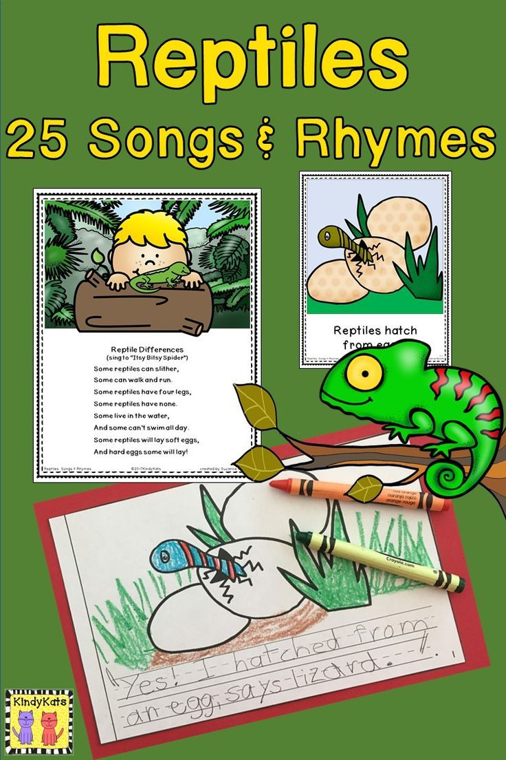 Sing Your Way Through Your Reptile Studies With These Original Piggyback Songs And Rhymes Tpt Reptiles Preschool Songs Rhymes [ 1104 x 736 Pixel ]