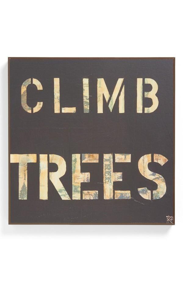 Explore & climb trees.
