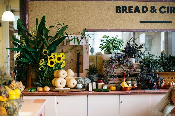 Bread & Circus Alexandria