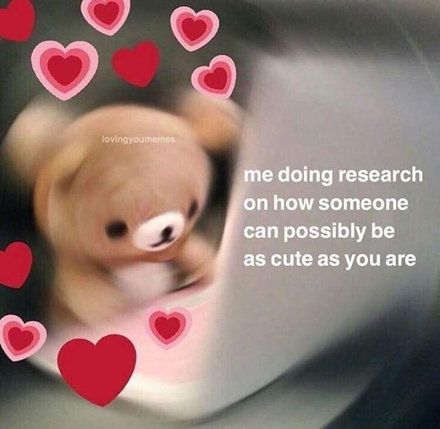 Pin By Emma Grace On Memes Cute Love Memes Love You Meme Love Memes For Him