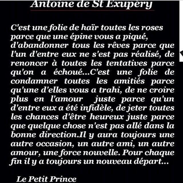 Saint Exupery ; le petit prince