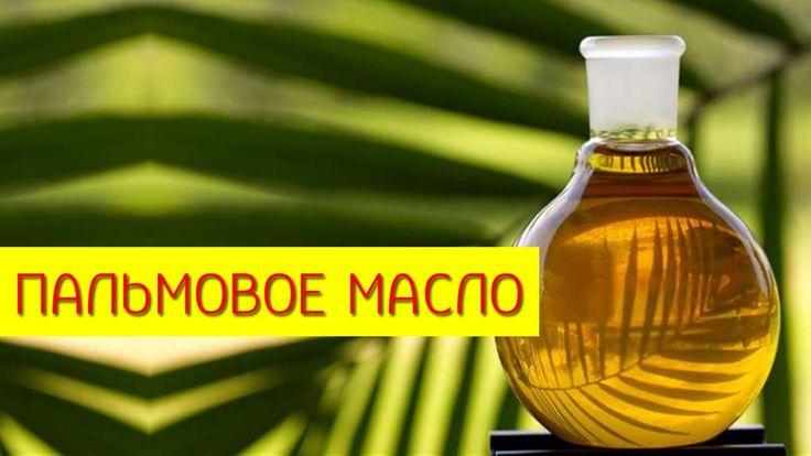 Пальмовое масло. Как использовать пальмовое масло?  [Галина Гроссманн]