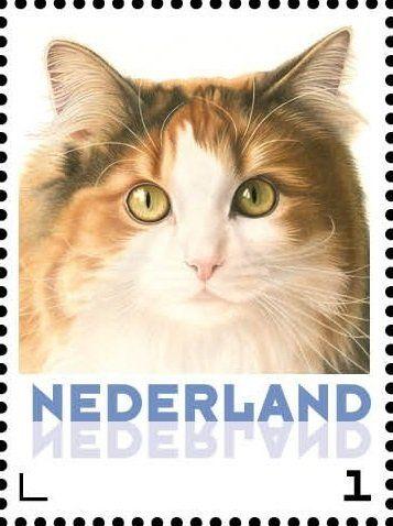 Stamp: Domestic Cat (Felis silvestris catus) (Netherlands - Personalized stamps) (Cats, Francine van Westering) Col:NL 2015-110