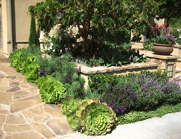 Bonnie's Gardens Home Page – Specializing in Garden Facelifts & Drought-resistant Landscapes