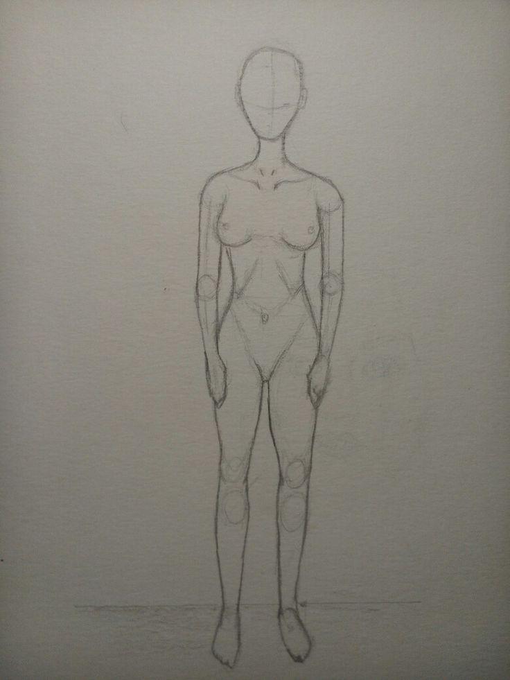 Anatomie einer Frau