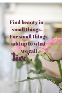 Find beauty in the small things, for small things add up to what we call 'live