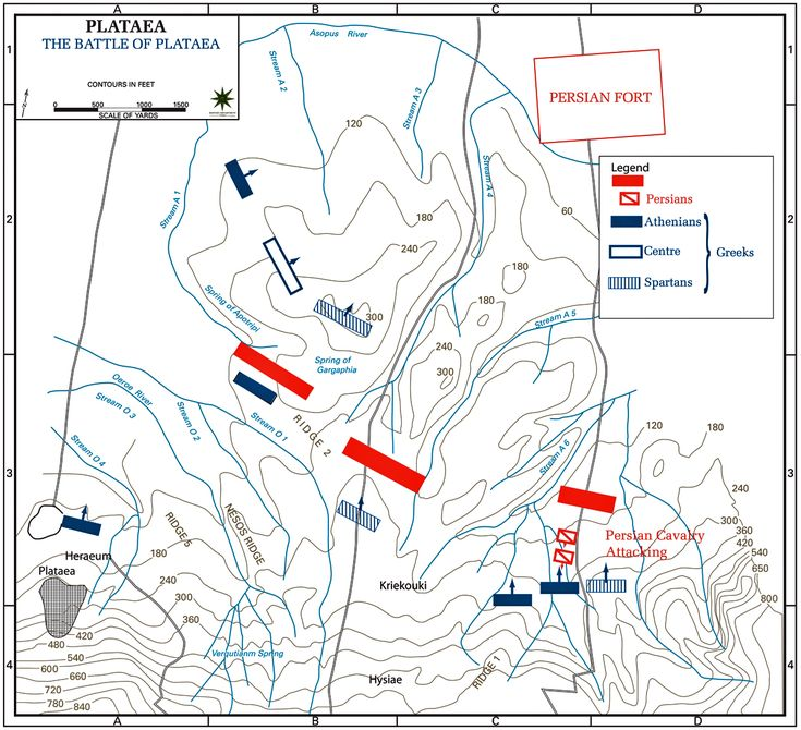 Map of the Battle of Plataea 479 BC