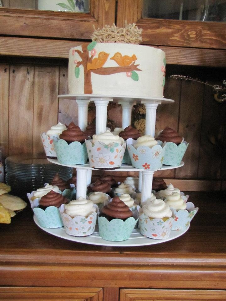 Baby Shower Cakes Utah ~ Best pink green and brown baby shower images on