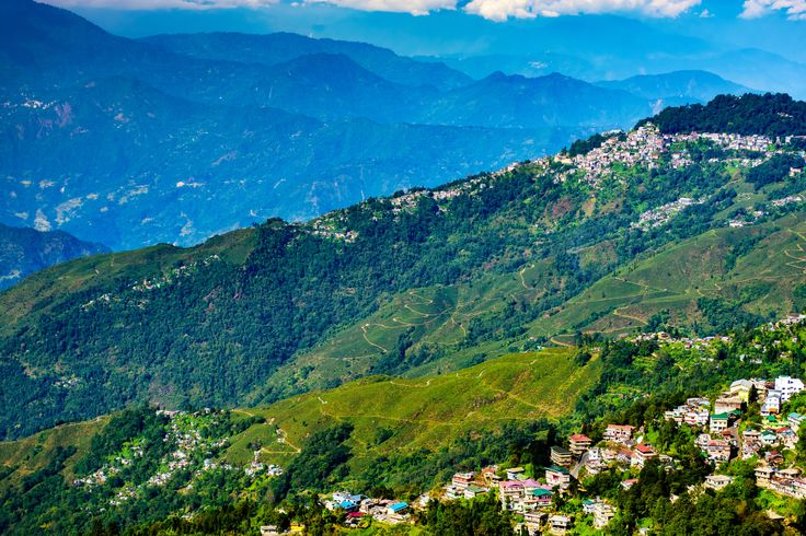 Tea Gardens of North Bengal, Darjeeling Hill of Himalayas - Tea Gardens of North Bengal, Darjeeling Hill of Himalayas, copy space