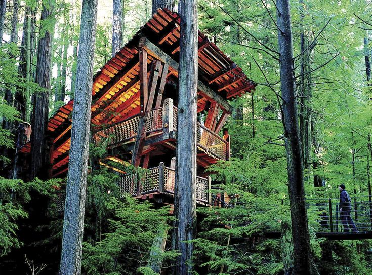 Vancouver Attractions – Treetops   Capilano Suspension Bridge   Capilano Suspension Bridge Park