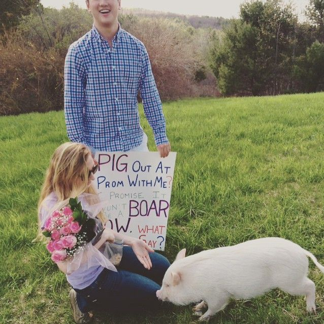 Proposal Ideas Using Pets: 1000+ Images About Promposals On Pinterest