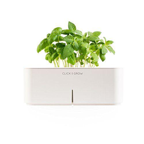 Special Offers   Click U0026 Grow Smartpot Basil Indoor Grow Kit   In Stock U0026  Free