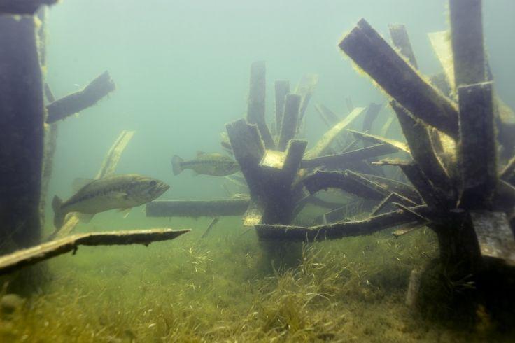 1000 images about fishiding artificial fish habitat on for Artificial fish habitat