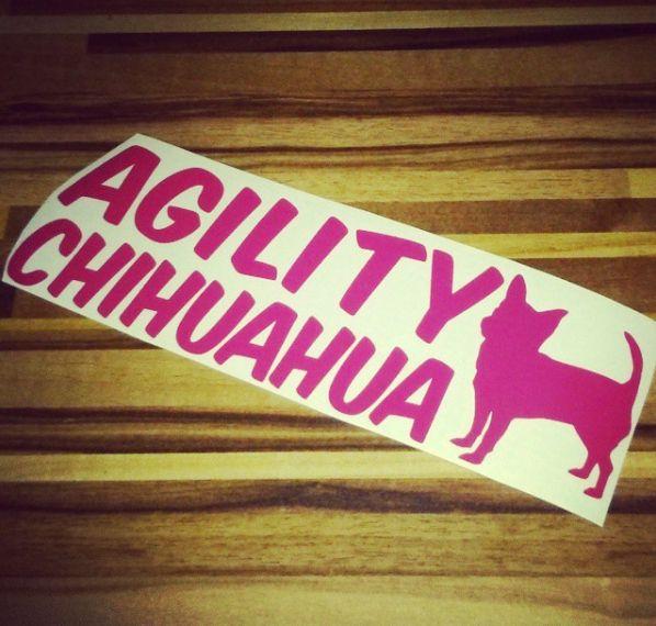 Nálepka pro čivavu | Sticker for chihuahua #agility #agilitychihuahua #chihuahua #civava #agilitycivava #sticker #newsticker #nalepka #novanalepka #fuchsia #byblackberry #collarsbyblackberry #odblackberry #obojkyblackberry