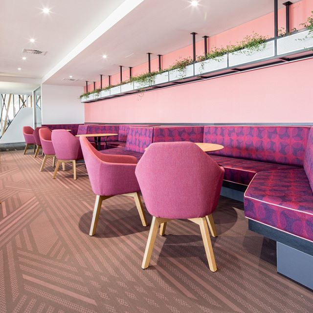 Trendy purple #banquetteseating designed and manufactured by #knightsbridgefurniture   Each banquette seat is uniquely designed for the users specific requirements.