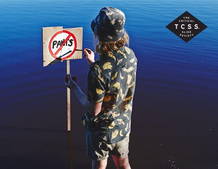 TCSS / Shreddin' Sharks