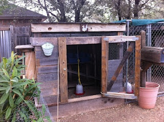 1000+ images about Chicken Coop on Pinterest | Cute ...