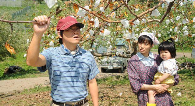 『奇跡のリンゴ』 -(C) 2013「奇跡のリンゴ」製作委員会