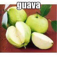 Nutrients in 100 g guava contains............ approximately: 2.8-5.5 g fiber; 0.9-1.0 g protein; 0.1-0 g fat; 9.1-17 mg calcium; 17.8-30 mg phosphorus; 0.30-0.70 mg iron; 200-400 i. U carotene (vitamin A); Thiamine: 0.046 mg; Riboflavin: 0.03-0.04 mg; Niacin: 0.6-1,068 mg; 40 i. U vitamin B3 ...