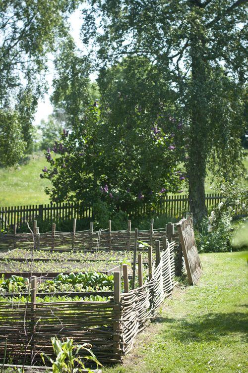 .: Hemlängtan: Trädgård :.